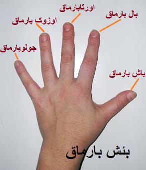 http://azerbaijani.arzublog.com/uploads/azerbaijani/barmaqlar_a.png