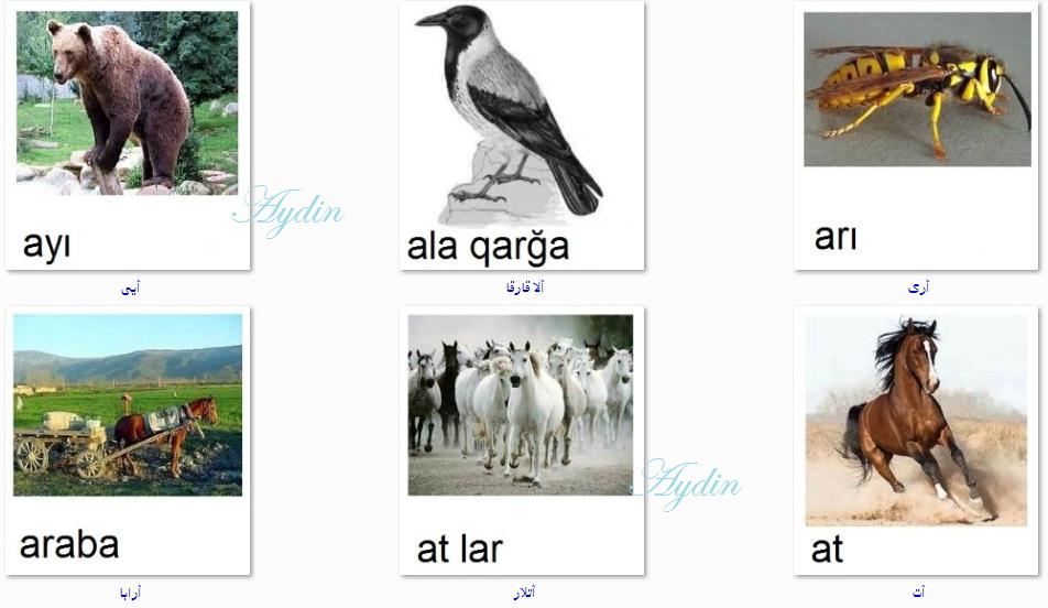 http://azerbaijani.arzublog.com/uploads/azerbaijani/f_c.l7.jpg