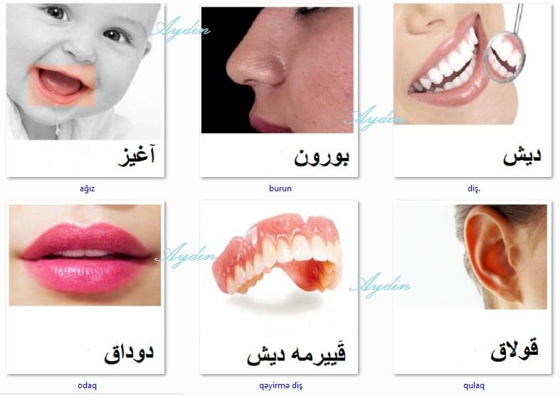 http://azerbaijani.arzublog.com/uploads/azerbaijani/uz1a.jpg